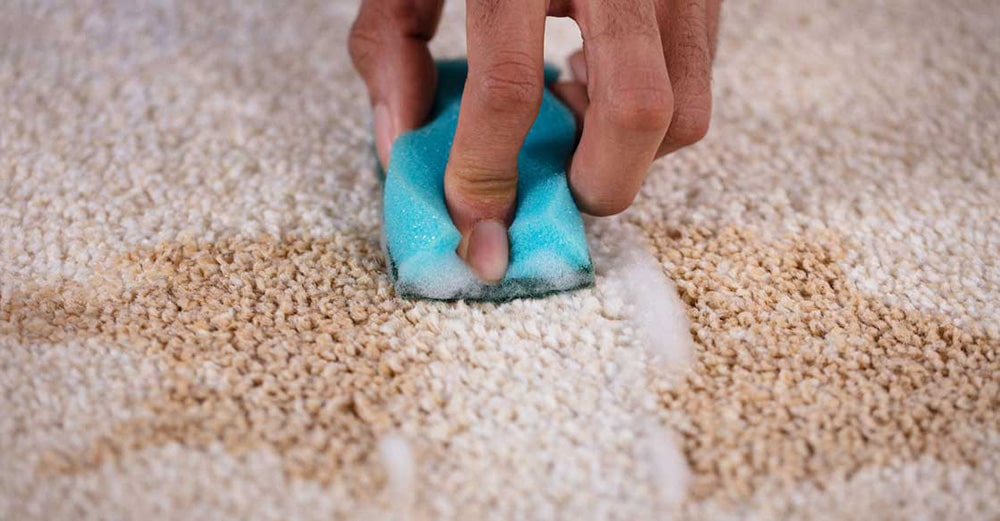 How Do I Deep Clean My Carpet? 5 Pro Tips